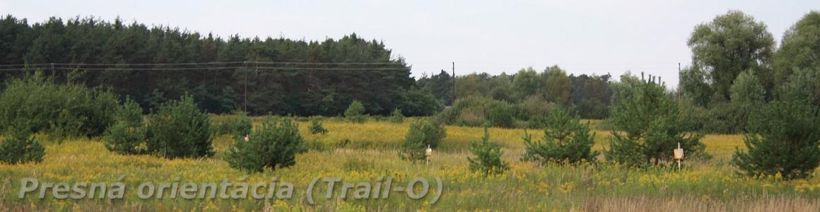 Presná orientácia (Trail-O)